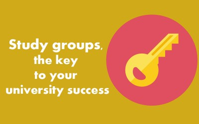 Study groups, the key to your university success