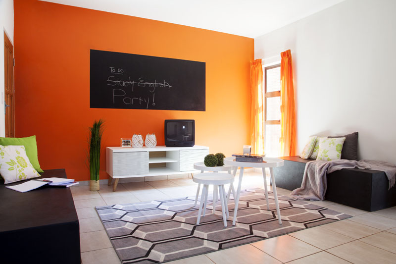 Studio Apartment in Bertrams